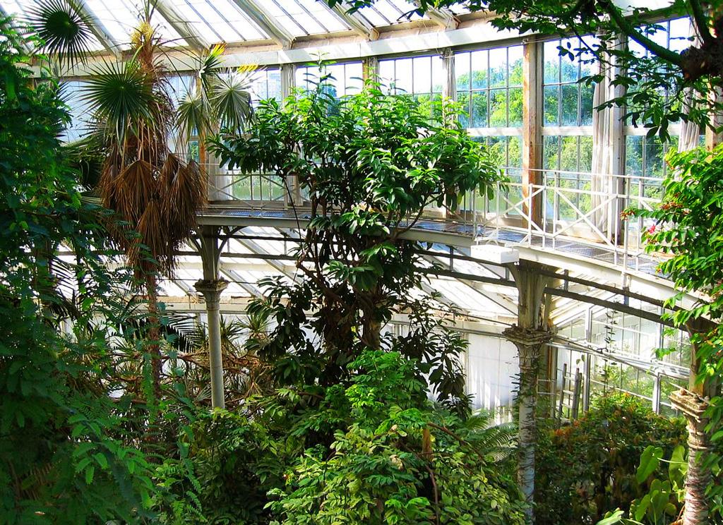 Ботанический сад Копенгагена