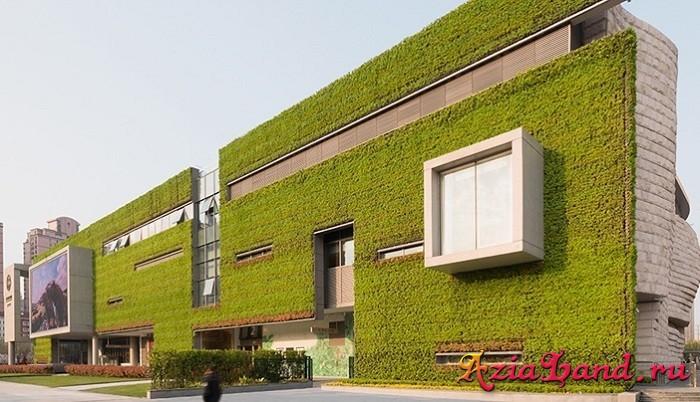 Музей Естествознания в Шанхае