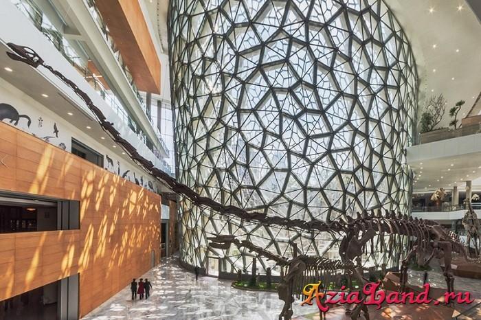 природный музей в китае