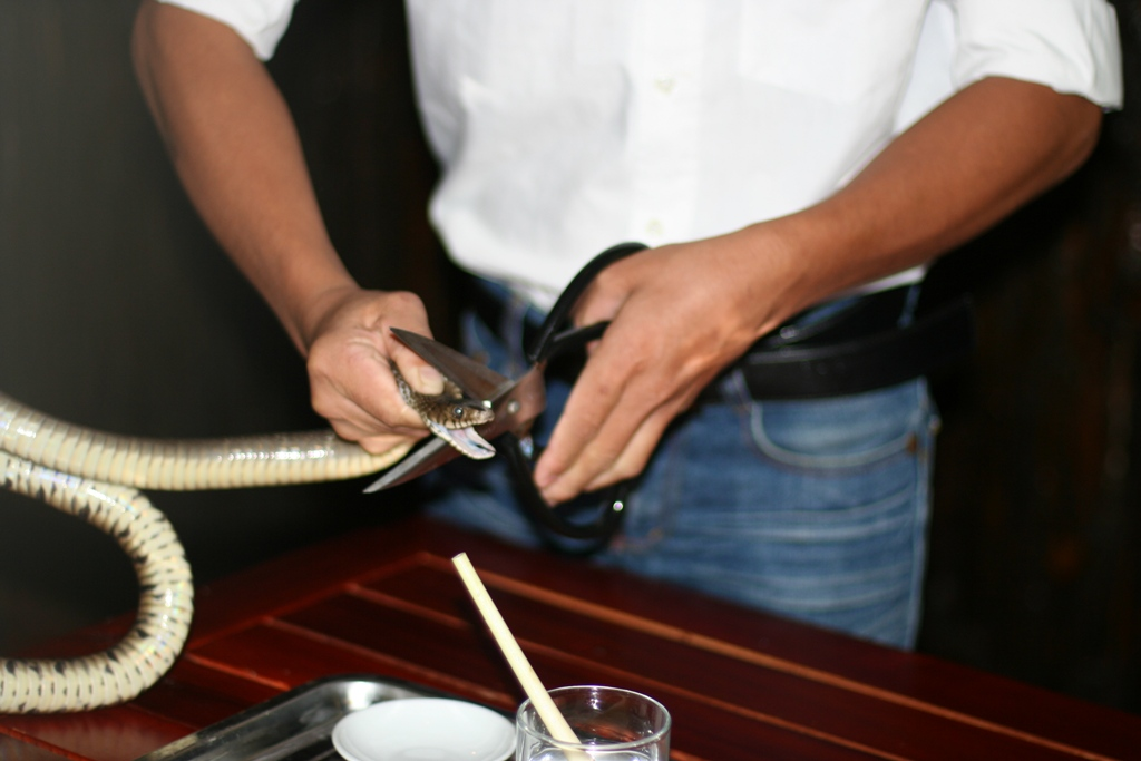Приготовление коктейля Кровь змеи