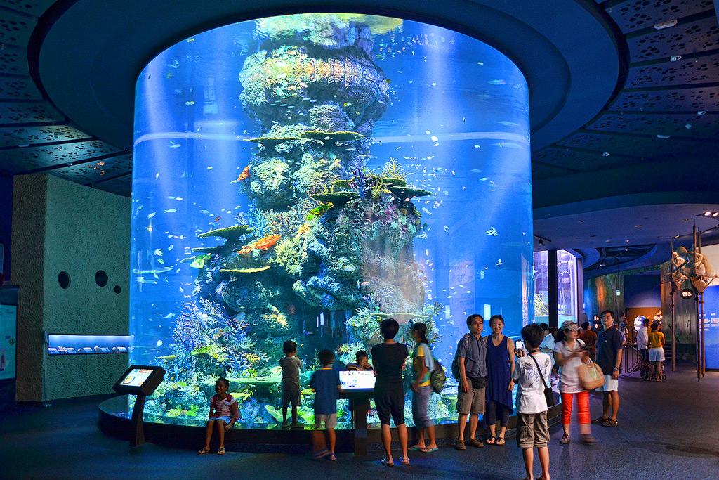 Океанариум, Сингапур