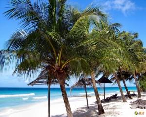 Великолепный отдых на острове Барбадос