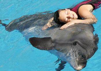 Танцы с дельфинами в открытом море - Новая Зеландия