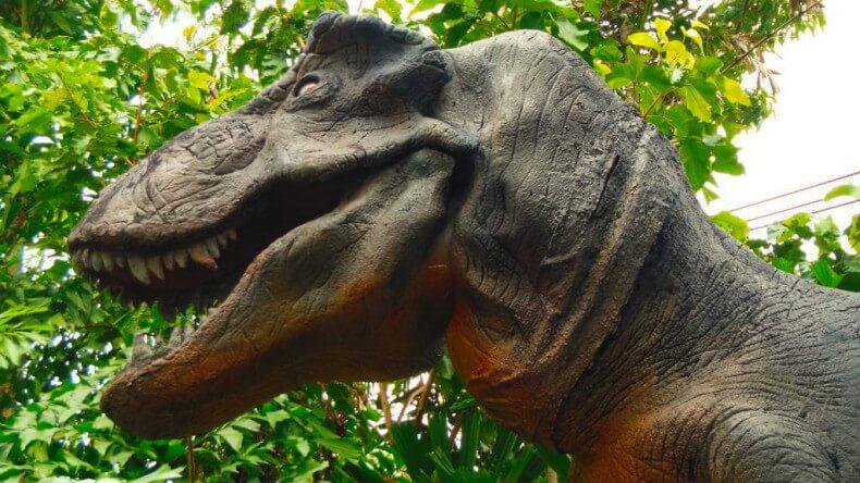 Дино Парк на Пхукете – ощути атмосферу юрского периода!