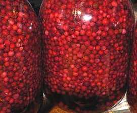 Заготовки из клюквы и брусники на зиму