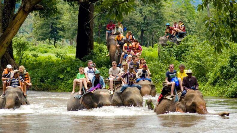 Развлечения в Тайланде - Прогулки на слонах