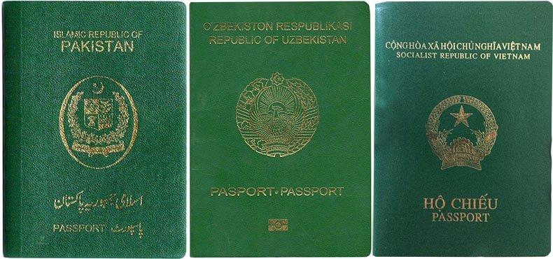 Зеленый цвет паспорта