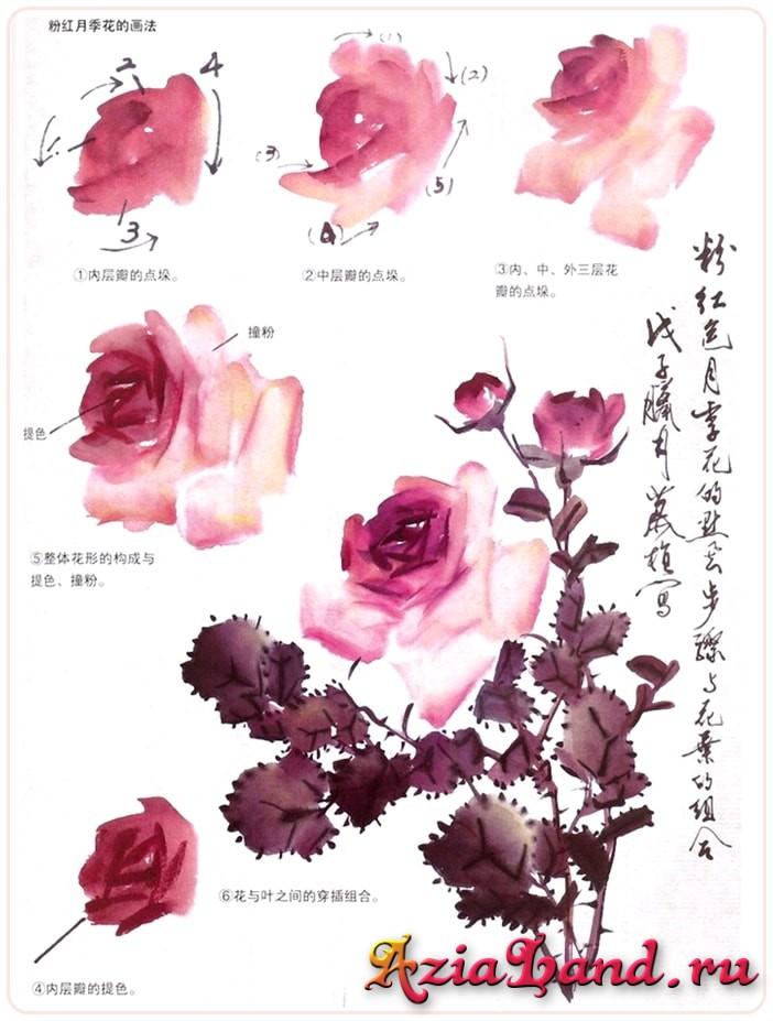 как рисовать розу, гохуа