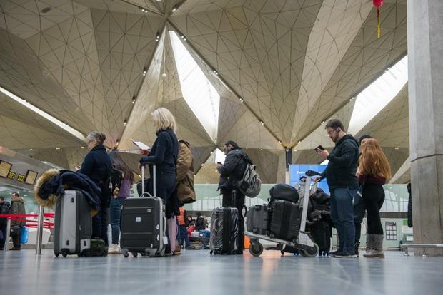 Аэропорт Санкт-Петербурга за два месяца 2019 года увеличил пассажиропоток на 13,8%