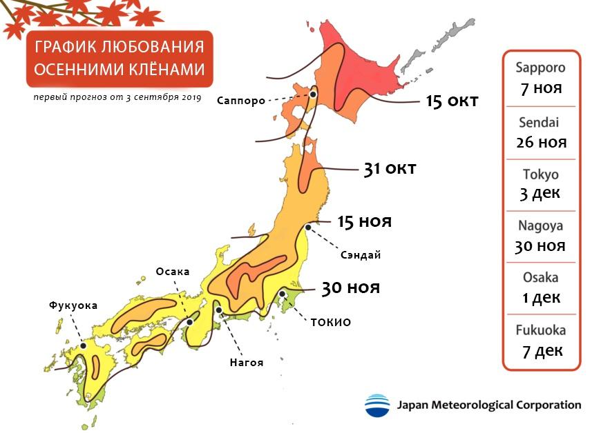 Красные или жёлтые: где и когда любоваться осенними клёнами в Японии?